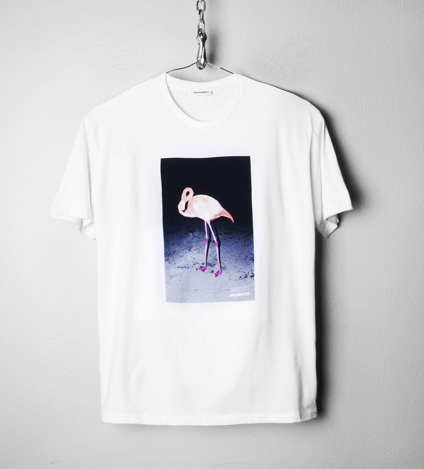 FlamingoLoveWt