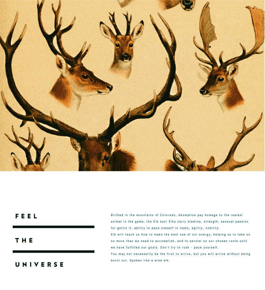 Deer Head Cover