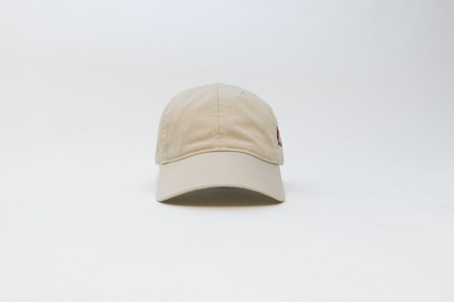 Follow Your Heart Dad Hat